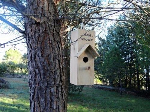 Photo - Nichoir La Cabane de l'Arbousier - oiseaux