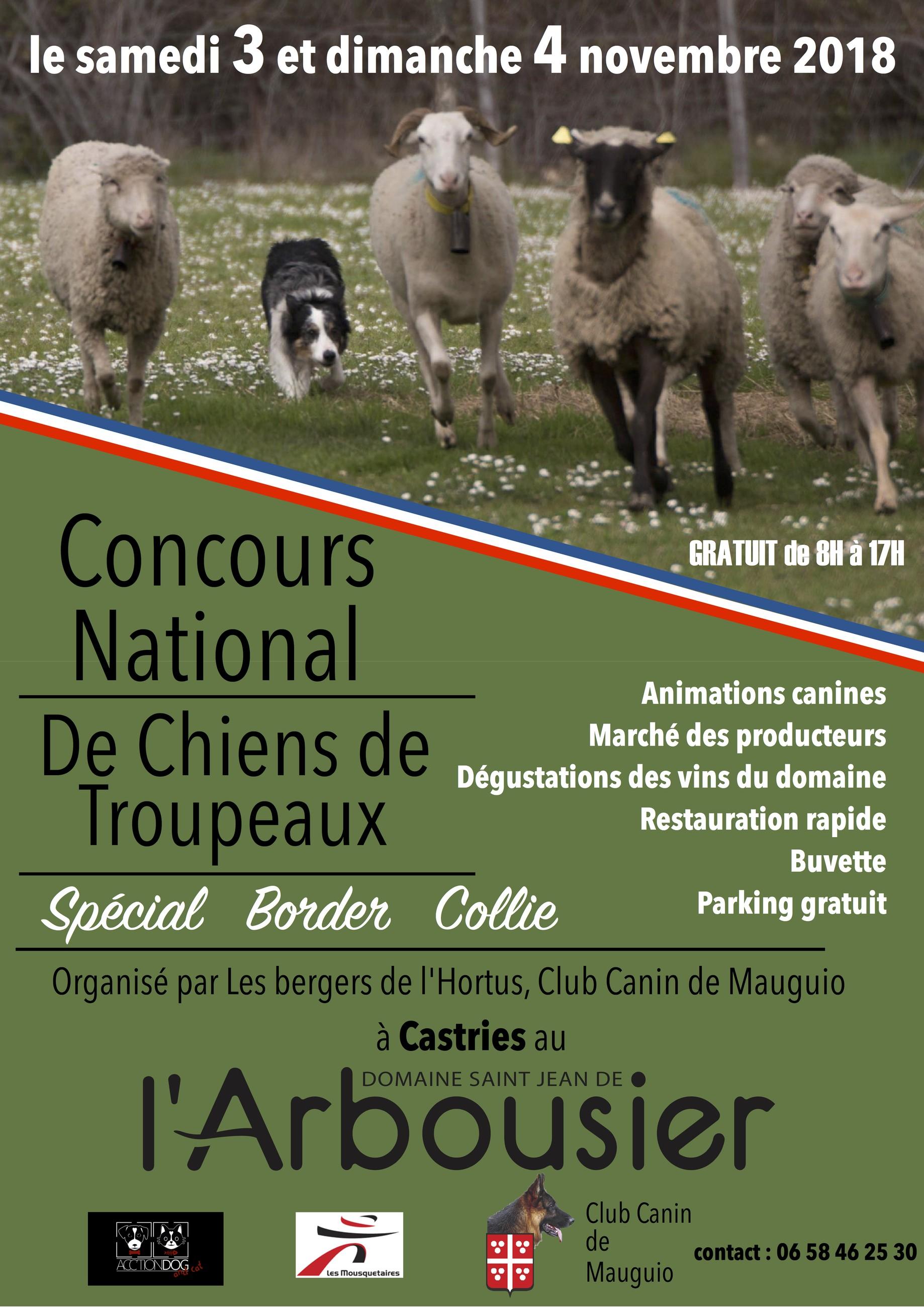 Concours national de chiens de troupeaux