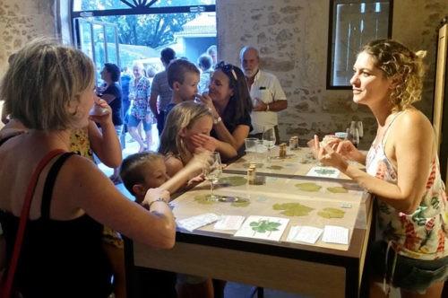 Photo Oenotourisme - Événement - Atelier senteur - visiteurs caveau