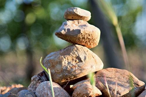 Photo gros plan - terroir - pierre entassées