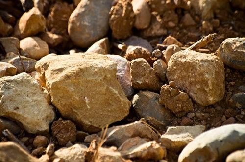 Photo gros plan - terroir - terre et pierre